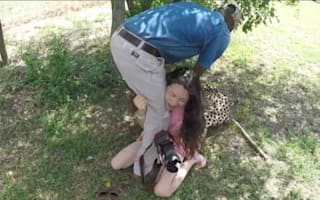 Cheetah attacks tourist at South African lodge