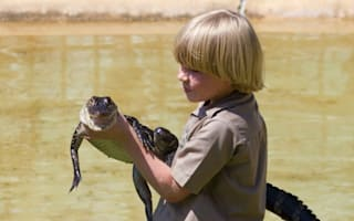 Mini me: Steve Irwin's young son carries on croc tradition