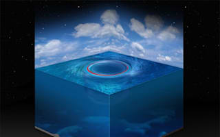 Scientists find 'black holes' in the sea