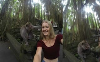 Tourist's 'cute' selfie goes wrong when monkey pulls her hair
