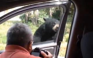 Black bear opens car door, terrifies family inside