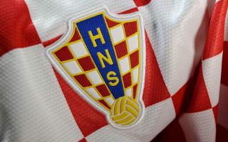 Croatian referee Maric attacked by bar-wielding hooligans