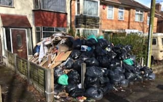 Mountain of rubbish rotting in garden for more than a month
