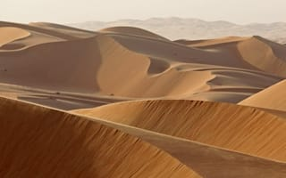 Couple die of thirst in Saudi Arabia desert