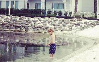 Disney alligator attack: Photos show ANOTHER boy in same spot