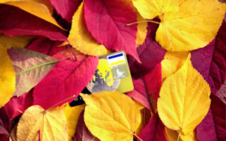Check out these cool autumn credit card deals