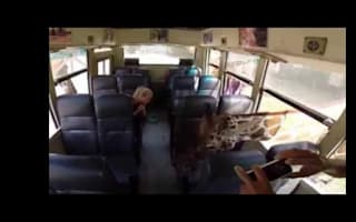 Nosey giraffes poke their heads into safari car (video)