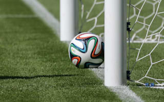 Copa America to use goal-line technology