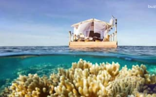 Airbnb offers chance to spend a night on the Great Barrier Reef