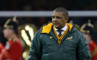 Coetzee does not fear Springboks sack