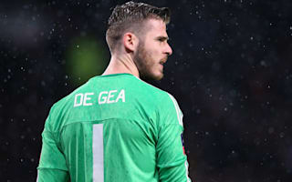 De Gea fully committed to Manchester United - Schneiderlin