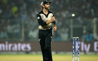 Williamson to captain New Zealand in all formats