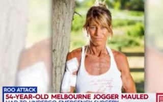 Jogger attacked by kangaroo thrown around like 'rag doll'