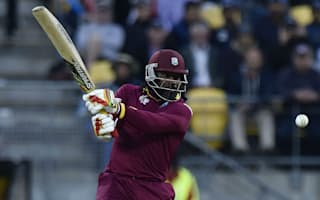 No pressure on 'destructive' Gayle, says Sammy