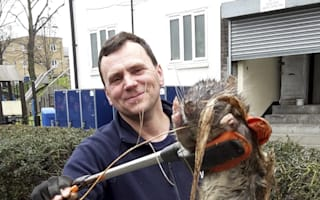 Giant 'four foot' rat found in London
