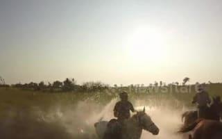 Lion attacks group on 'horseback safari'