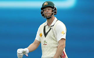 Voges accepts Test career could be over