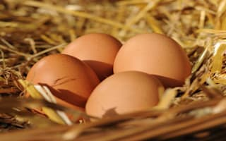 What does Yorkshire Building Society buying Egg mean for you?