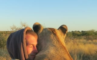 Pictures: Amazing bond between abandoned lioness and men that saved her