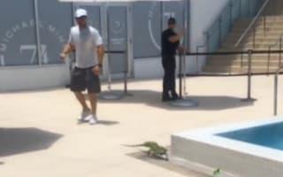 Arsenal star Kieran Gibbs' films huge iguana by holiday pool