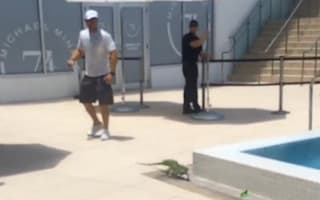 Arsenal star Kieran Gibbs' films huge iguana by holiday pool