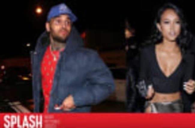 Karrueche Tran Gets Restraining Order Against Chris Brown