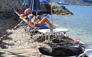 Monk seal makes herself at home amongst the locals in Greece