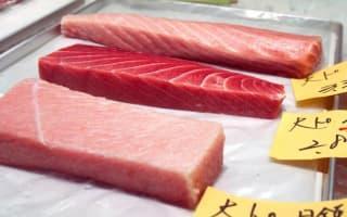 Pacific bluefin tuna population reaches record low