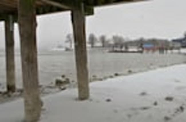 """Swimmers compete for the title of """"Ice king of Chiemsee"""""""