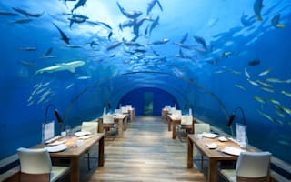 Would you dine in this restaurant?