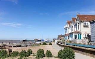 Dogs to be banned from Whitstable beach in row over poo