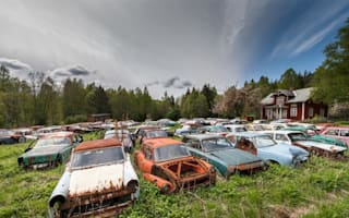 Classic car graveyard discovered in Swedish woodland