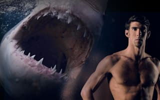 Michael Phelps to race a great white shark