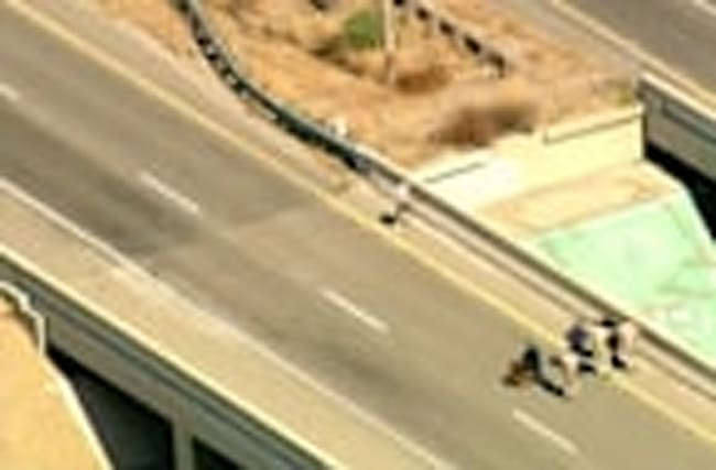 High speed chase drama ends at freeway ledge