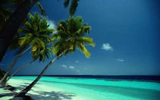 Fancy a free trip to the Seychelles? Then become an MEP!