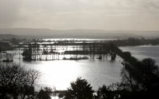 Thieves target levels flood victims