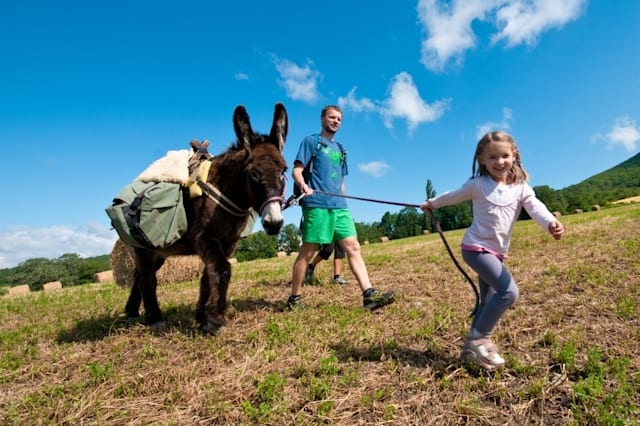 Take an unforgettable walk with a donkey in France