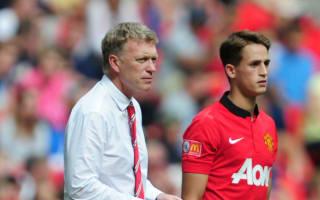 Moyes: Sunderland interested in Januzaj and Fellaini