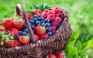 Make the most of summer fruits