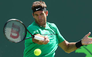 Del Potro makes strong start to clay season, Kohlschreiber through in Munich