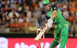 Stoinis replaces injured Marsh