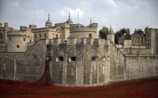 Call for Tower of London poppies WWI exhibition to be extended