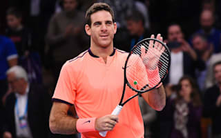 Del Potro cruises past Karlovic in Stockholm