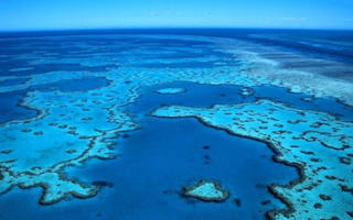Tourist left behind by snorkel boat on Great Barrier Reef