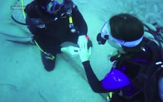Man proposes to girlfriend underwater surrounded by sharks