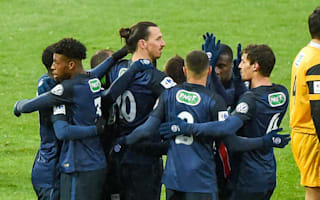 Wasquehal 0 Paris Saint-Germain 1: Ibrahimovic sends holders through