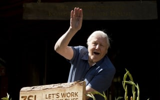 The one place David Attenborough REALLY wants to visit