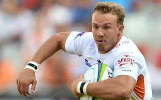Cheetahs ensure miserable return for Cavaliers
