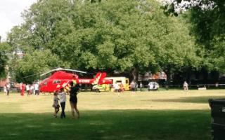 Sunbather's head run over by council van in London park