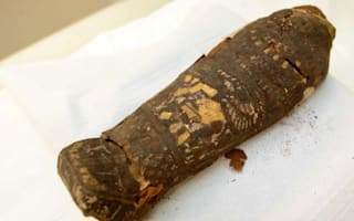 UK museum discovers fetus in sarcophagus